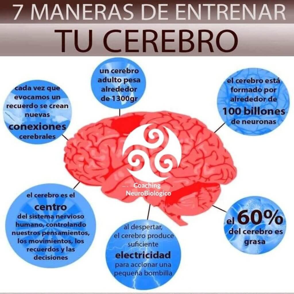 Entrenar cerebro