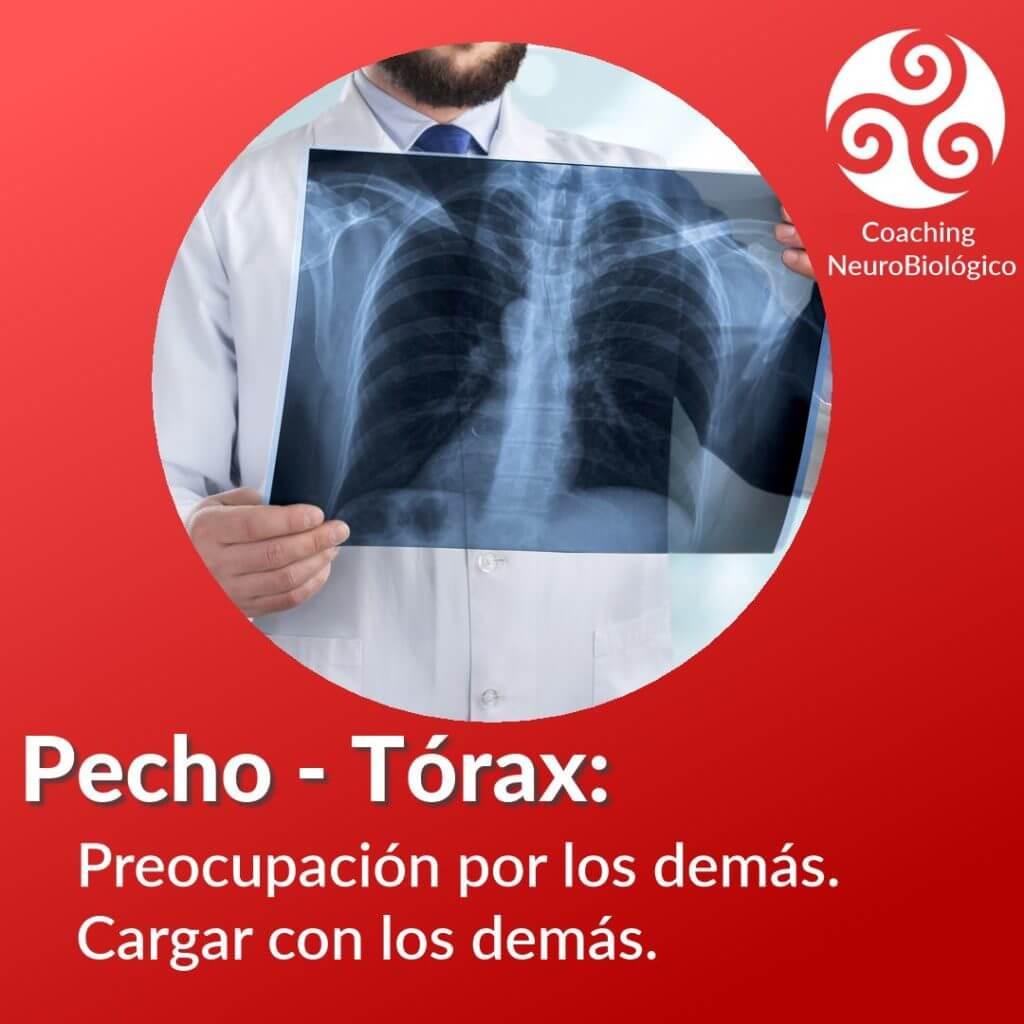 PechoTorax