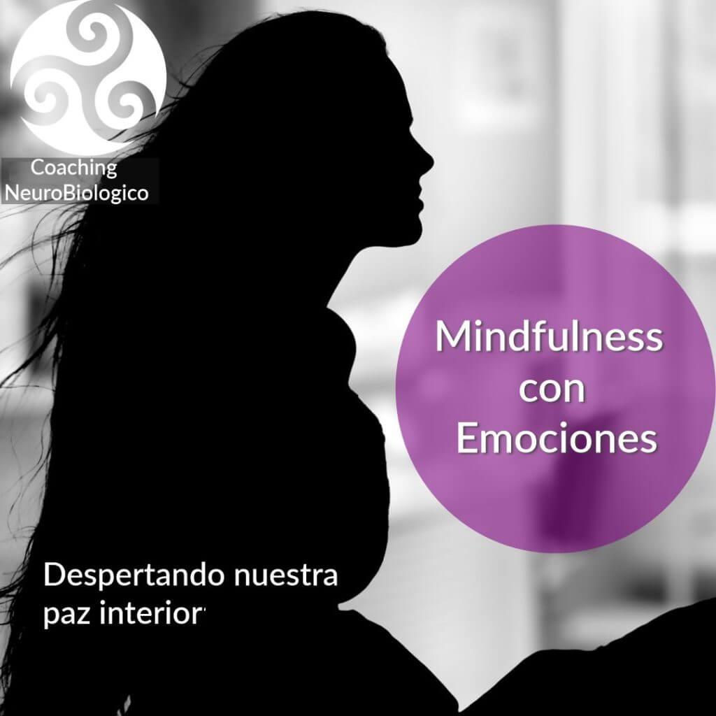 Mindfulness con Emociones