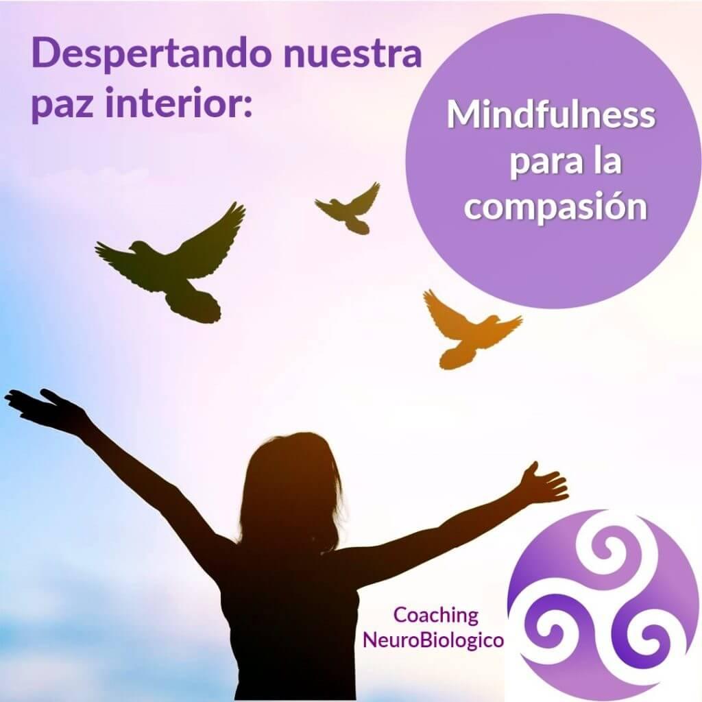 Mindfulness para la compasión