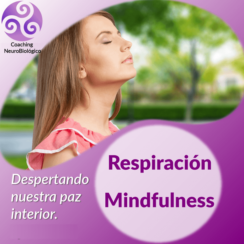 Respiracion Mindfulness