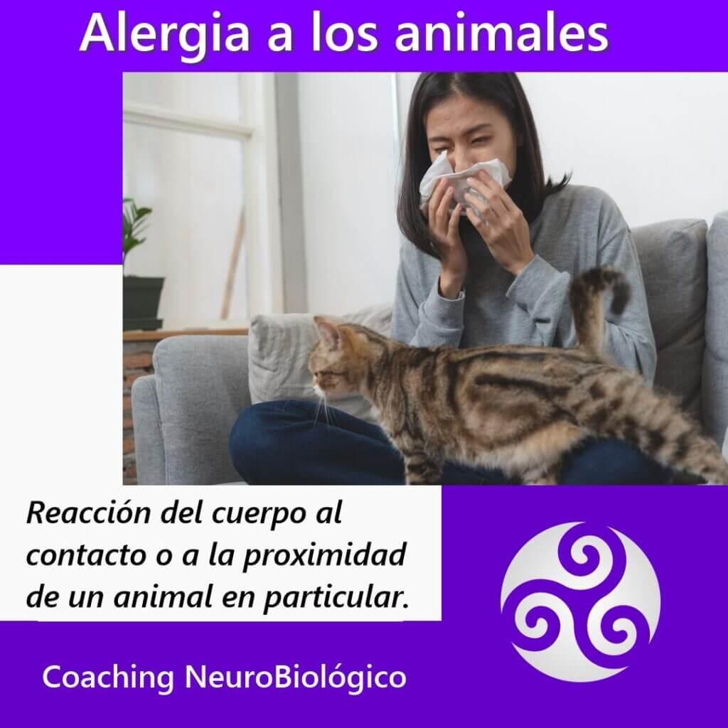 Alergia-animales