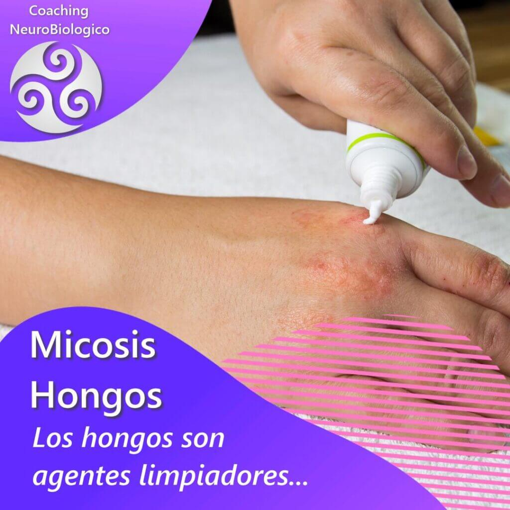 Micosis - hongos